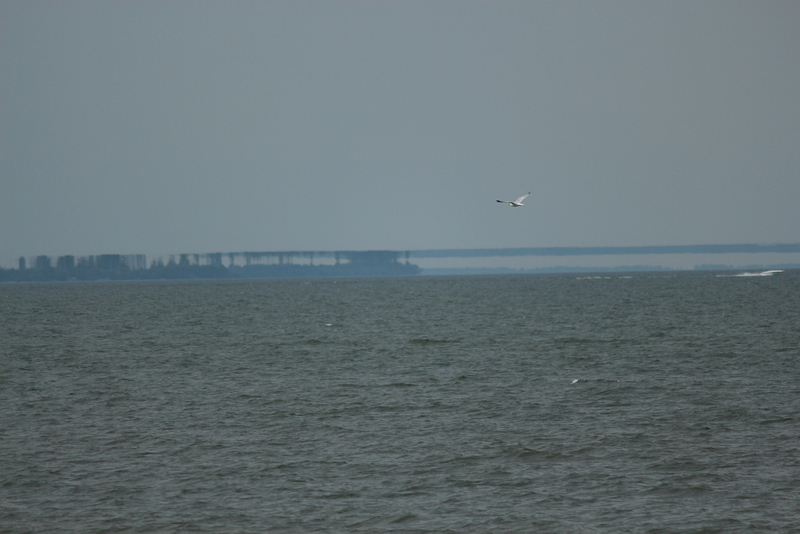 Lake Erie Mirage, Fata Morgana, Superior Image